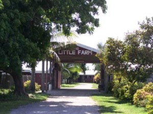 little farm miami